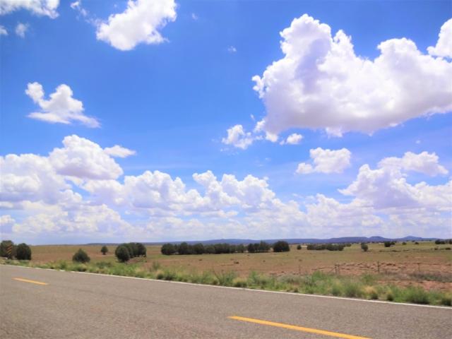 荒野と道路