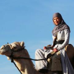 映画「アラビアの女王 愛と宿命の日々」